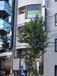 株式会社プライムコーポレーション 中目黒店